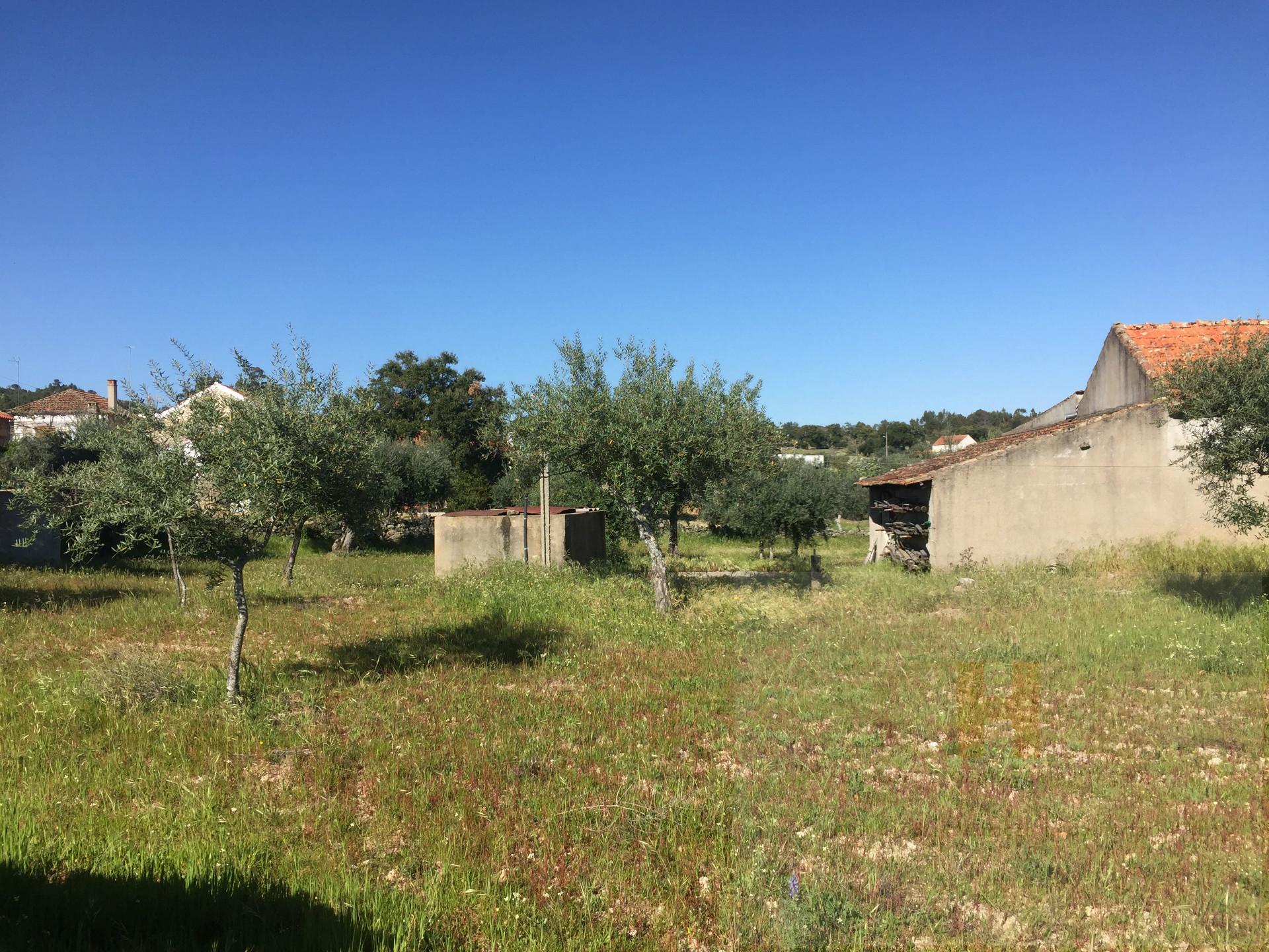 Piccola Fattoria 2 Vani, Castelo Branco, Penamacor